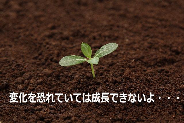 変化を恐れていては成長できないよ