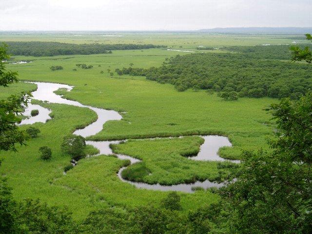 キラコタン沼